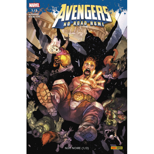 AVENGERS : NO ROAD HOME 1 (VF)