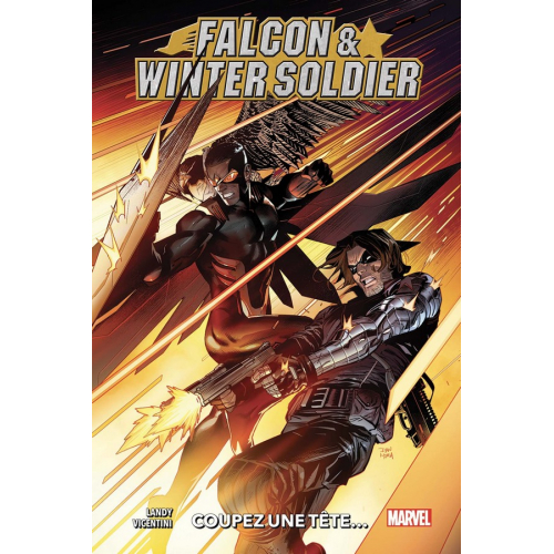 Falcon & Winter Soldier (VF)