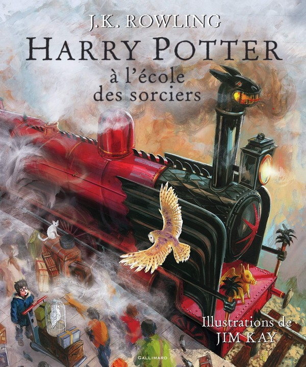 Harry Potter à l'école des sorciers Beau-livre collector (VF)