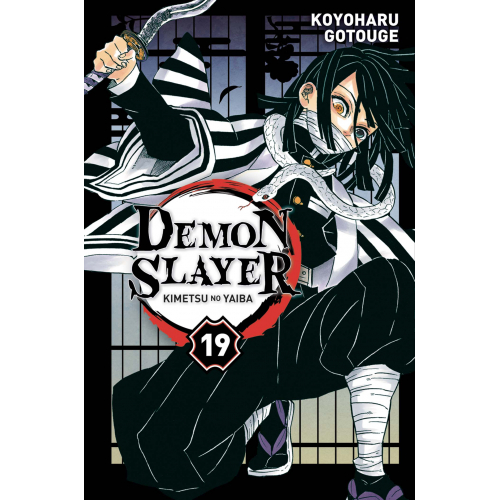 Demon Slayer Tome 19 (VF)